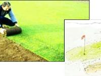 土壤加热系统